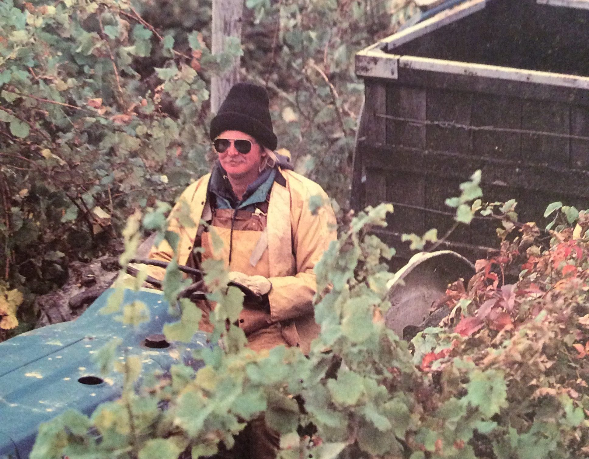 Hector Wine Company's Eric Hazlitt wears a black beanie and aviator sunglasses as he tends the vineyard in the 1980s